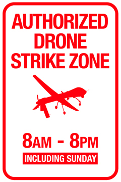 DroneZone2Thumb1 Drone Sign Prints